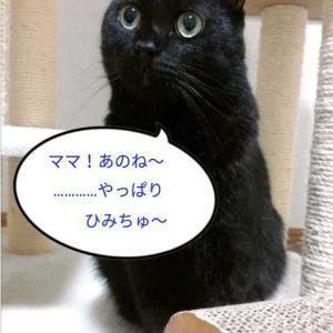 明日はお休みε=ε=(ノ≧ω≦)ノ