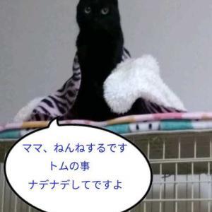 お休み日記(^^ゞ