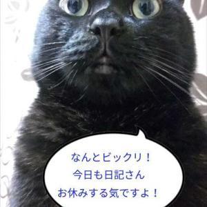 お休み日記(^^ゞ?