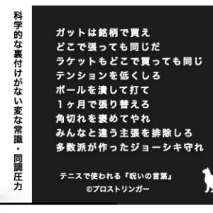日本人は平均で年に2回しかストリングを張り替えない