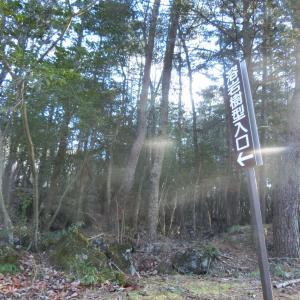 2020/1/13(月)鳴沢熔岩樹型 山梨県