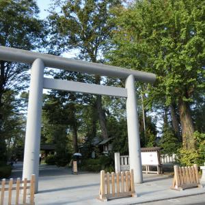 2019/10/09(水)阿佐ヶ谷神明宮 東京都