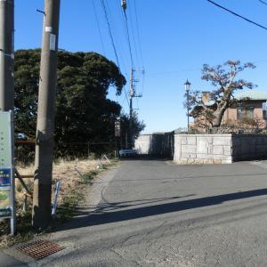 2020/2/09(日)小網代の森引橋入口 神奈川県