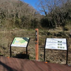 2020/2/09(日)小網代の森引やなぎテラス 神奈川県