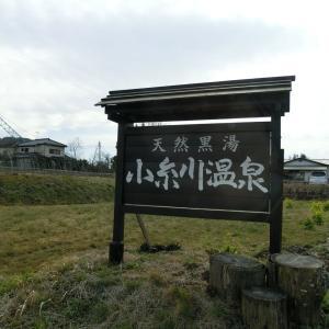 2020/2/22(土)小糸川温泉deランチ 千葉県