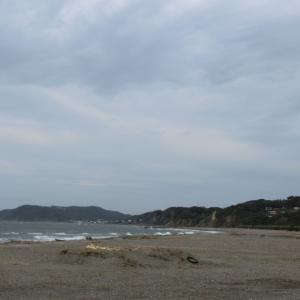 2020/2/22(土)上総湊港海浜公園 千葉県