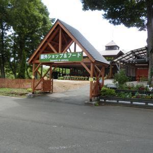 2020/8/21(金) 小岩井農場園外ショップ&フード 岩手県