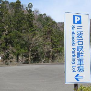 2021/3/27(土) 三波石峡駐車場 群馬県