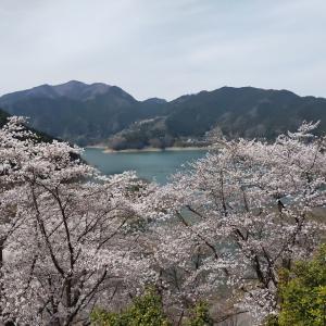 2021/3/27(土) 下久保管理所  埼玉県