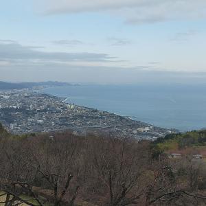 2021/3/9(火)石垣山一夜城歴史公園 神奈川県