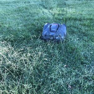 草丈30cmの雑草の中を走行するロボット芝刈機(オートモア)