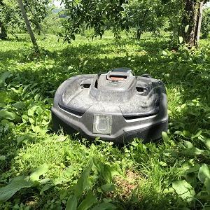 ロボット芝刈機(オートモア435X)の果樹園での設置!!!<前編>