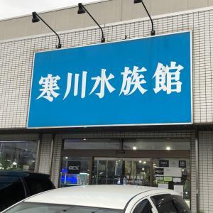 寒川水族館さんに行ってきました