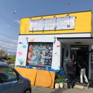 小田原の熱帯魚店、アクア共和国さんへ
