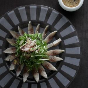 料理リレー レシピ「しめ鯖のサラダ」