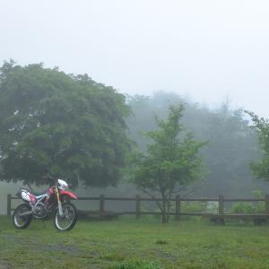 やっぱり雨の御荷鉾山