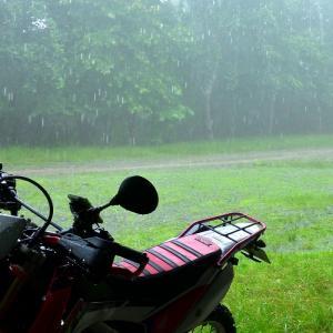 今日も雨だった⁉