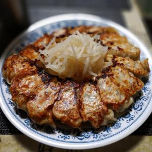 浜松餃子的なもの。