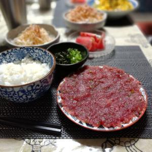 普通の鰹で伊東の郷土料理「うずわご飯」っぽいもの(※お腹が燃えた)