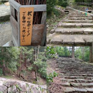 滋賀&岐阜の旅 その3 蜂がまとわりついて本当に困ったの巻。