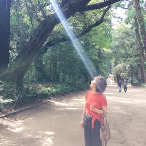 地元の鹿島神宮にごあいさつ