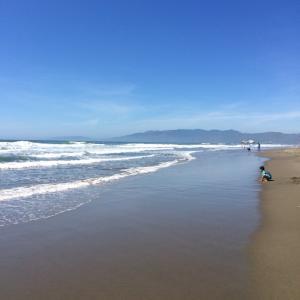 海で浄化〜♪