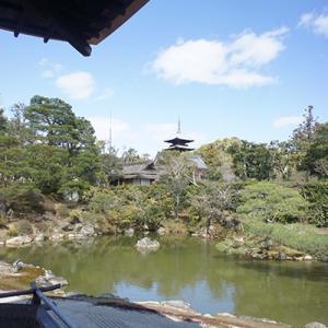 京都旅行12-仁和寺②