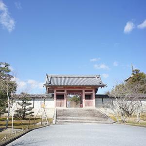 京都旅行13-仁和寺③