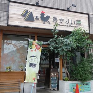 【西尾市】あかりい菜