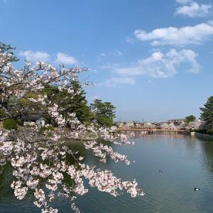 春の桑名宿さんぽ