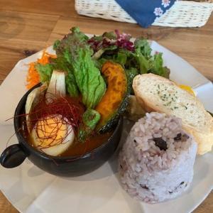 有機野菜カレーランチと旅の計画