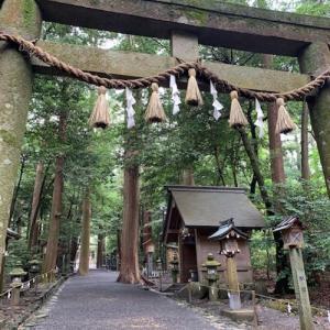 椿大神社で福茶とお昼ごはん