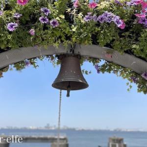 空と海と花in名古屋港ワイルドフラワーガーデン