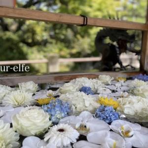 涼やかな津島神社六月の花手水