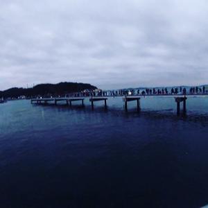 豊浜釣り桟橋 イワシ祭り