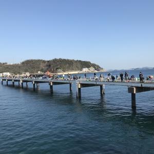 まだまだ豊浜釣り桟橋