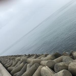 鬼崎漁港 タコはまだか?