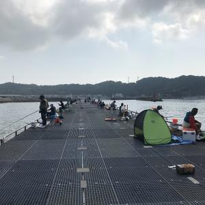 今日も豊浜釣り桟橋