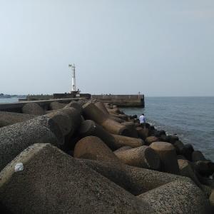常滑 大野漁港