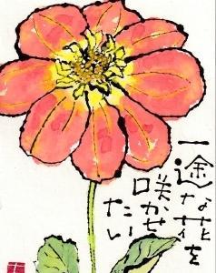 ダリア・一途な花