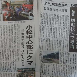 石川県 市街地にクマ出没多発
