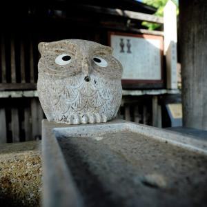 通勤姿、買い物客の弘明寺。神奈川県横浜市。