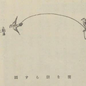 允恭記の軽箭と穴穂箭について