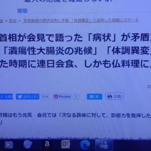 辞意の理由に「若干の疑い」~ 「桜」追及されていた時期にも倒れていたとの情報