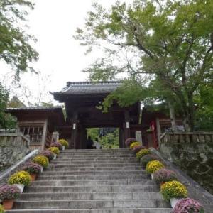 2泊3日静岡の旅 1日目 修善寺