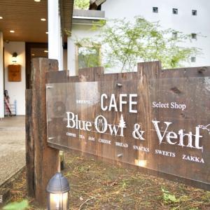 【素敵カフェ】低糖質専門店「Blue Owl & Vent」は糖質控えめなのに絶品スイーツが楽しめる!宮崎の最先端スポット<お取り寄せも可>