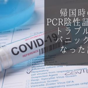 PCR検査陰性証明書でトラブル発生!ドイツから日本に帰国できなくなる?その理由と意外な解決方法