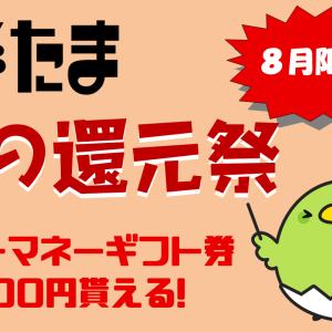 【8月25日まで】ドットマネーギフト券500円分が貰える!すぐたま入会キャンペーン「夏の還元祭」が見逃せない