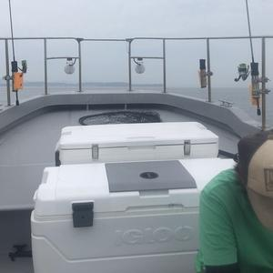 ロックフィッシュ!三河湾ボートゲーム