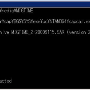 SAPマイグレーション実行時間分析ツール「Time Analyzer」の使い方